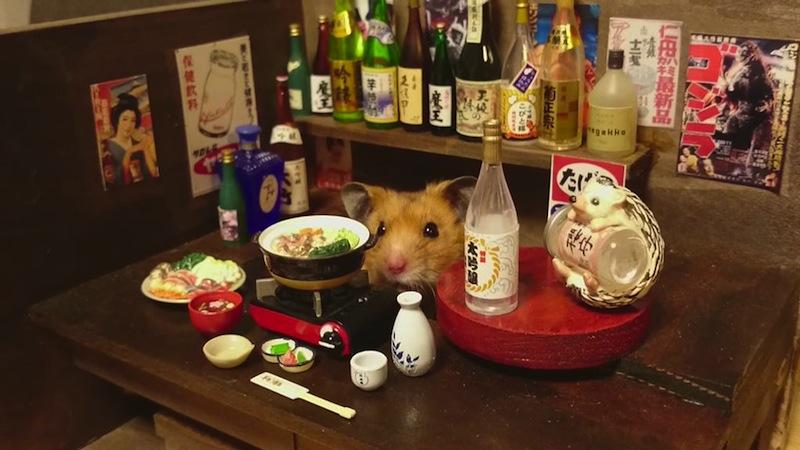 hamster-kawanabesatou-04