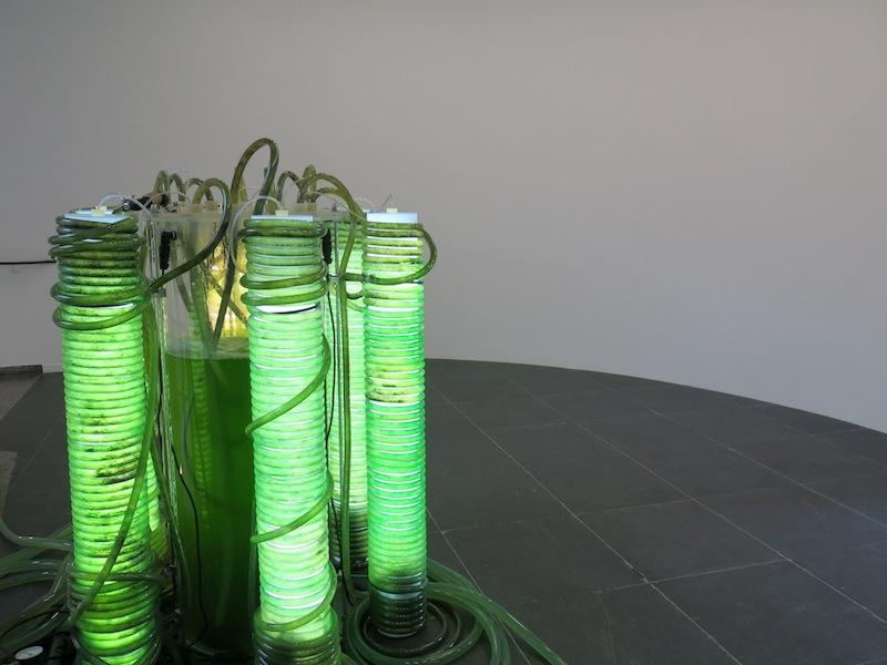 Thomas-feuerstein-psycoprosa-frankfurt-kunstverein-ausstellung-13