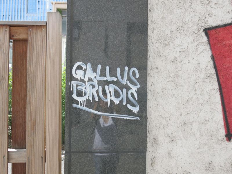korrekt-mittagstisch-gallus-frankfurt-08