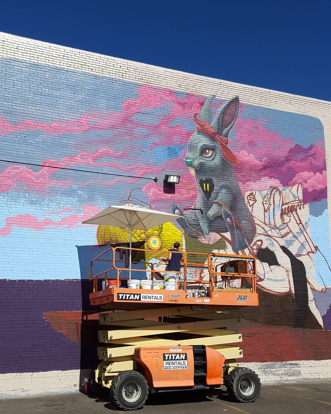 mural-tortoise-and-harriet-by-dulk-denver-03
