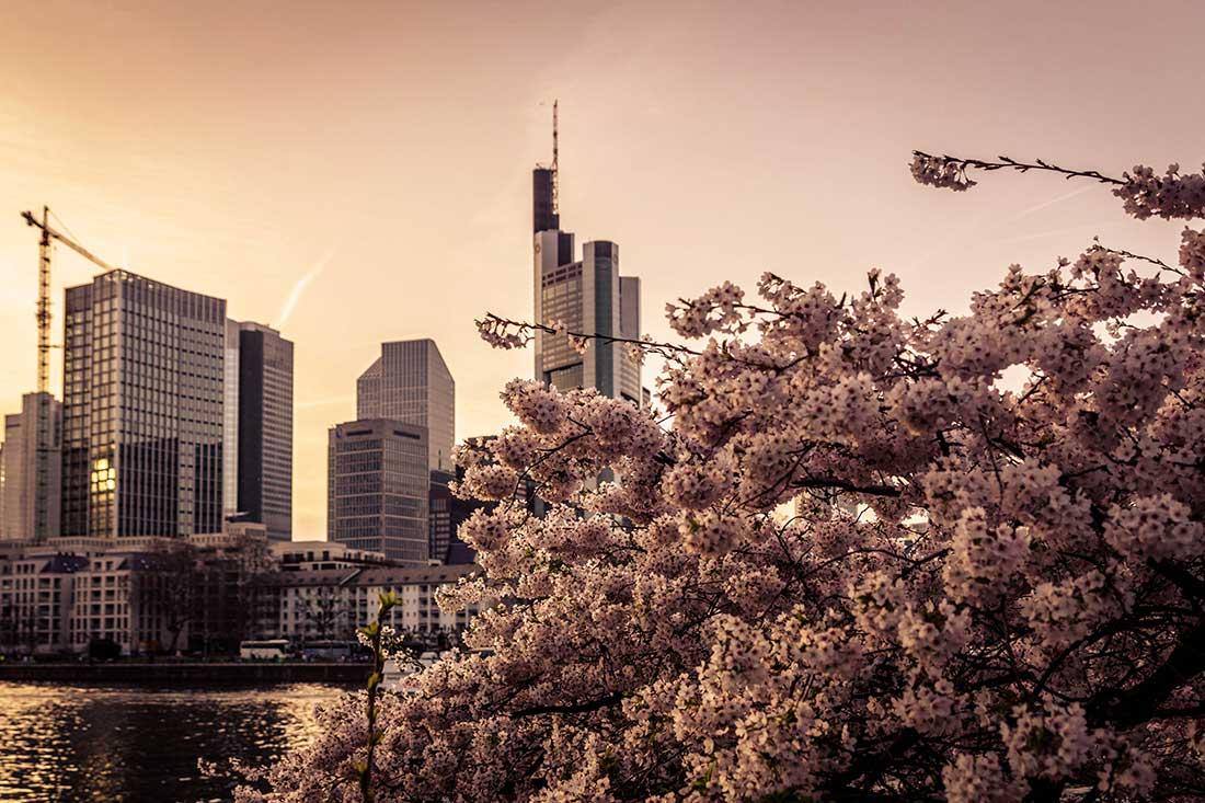 Feierabend in Frankfurt