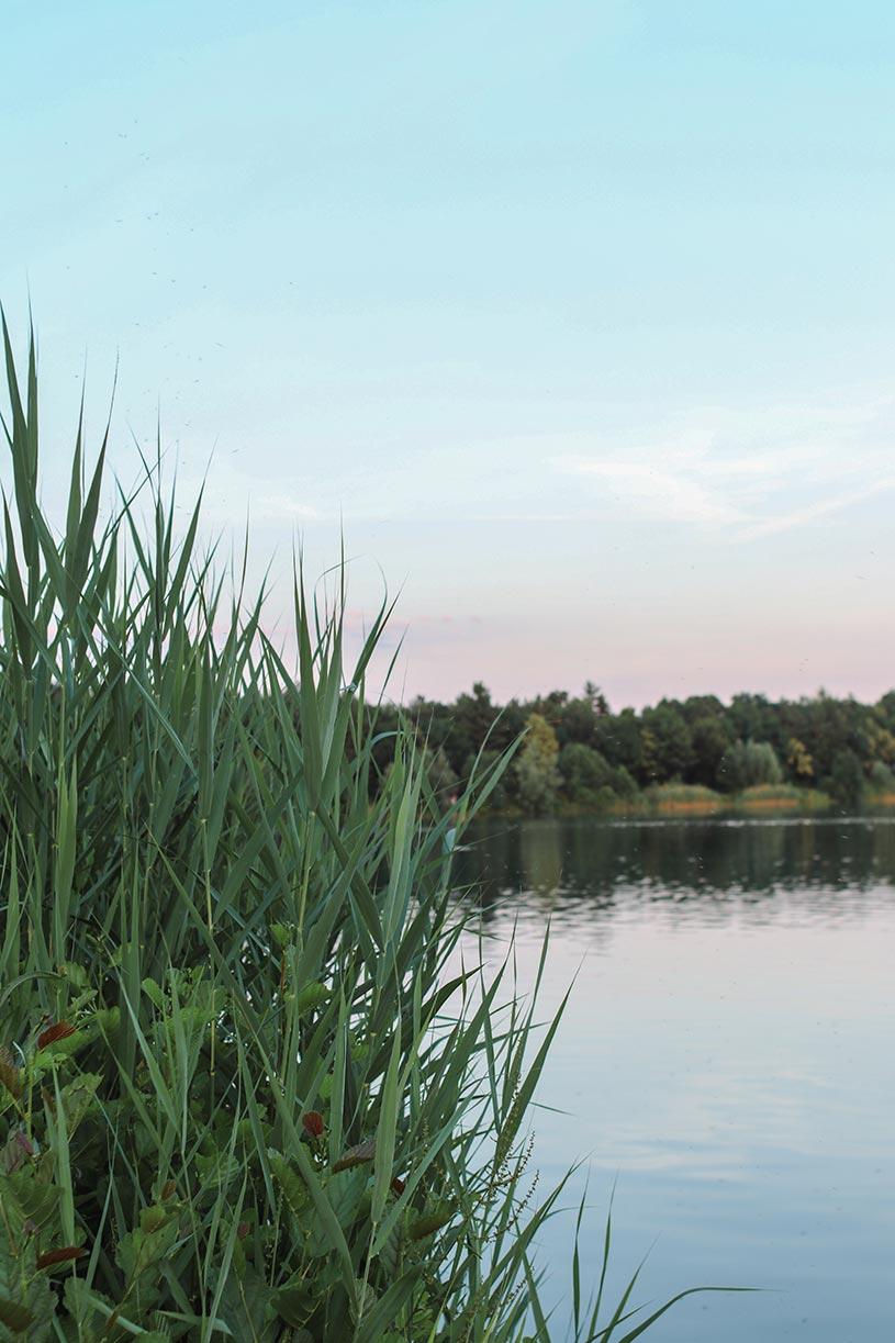 Wunderschöne Abendstimmung am See