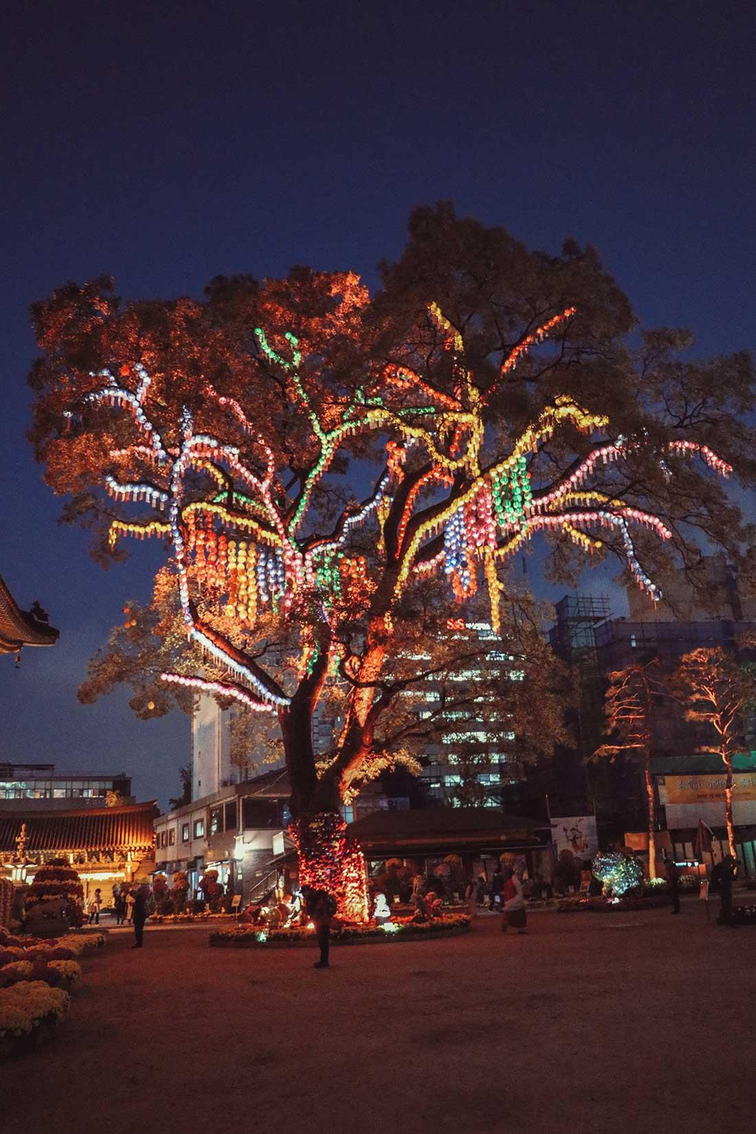 Der 24 Meter hohe Schnurbaum in der Mitte der Tempelanlage