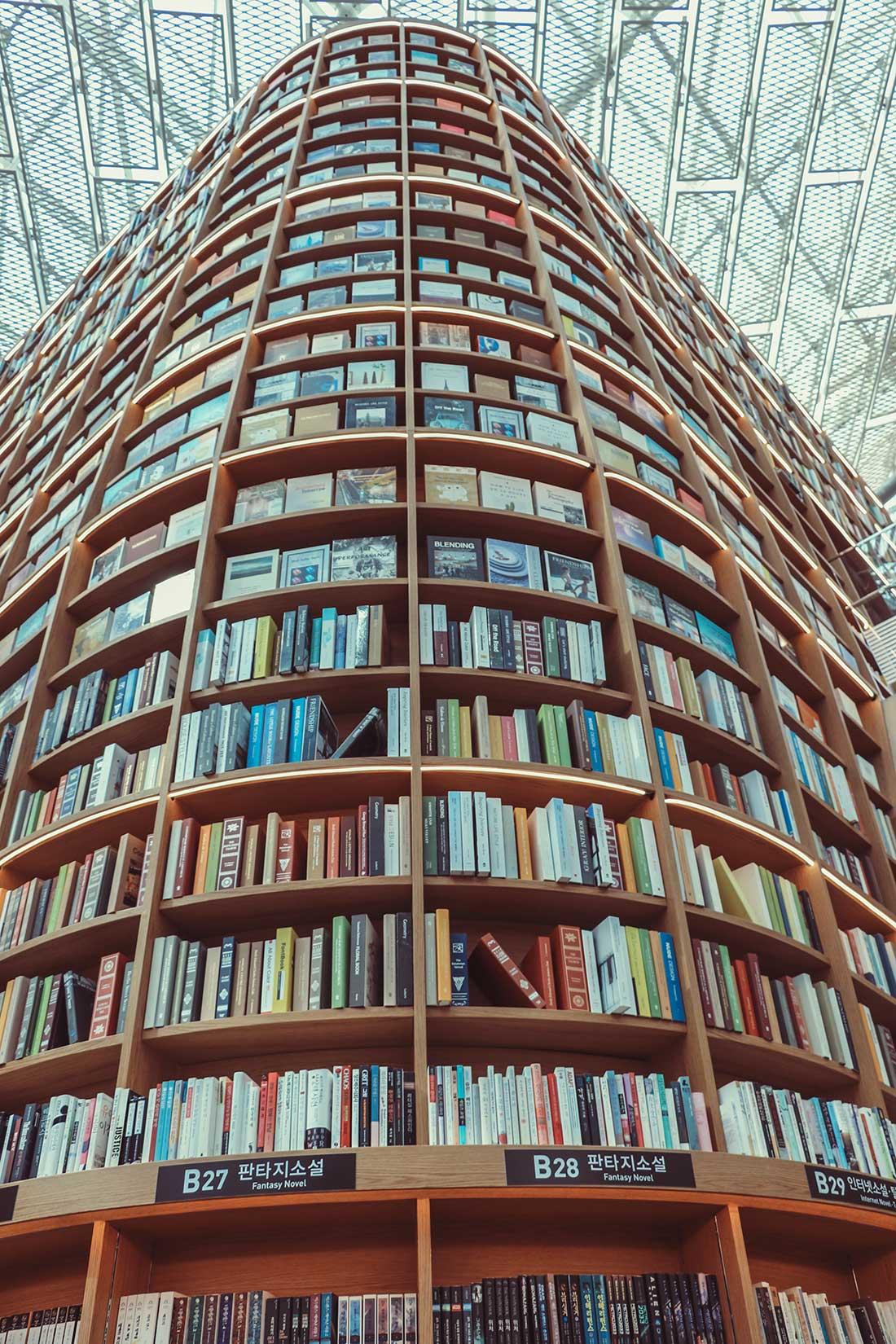 Bücher, Bücher und noch mehr Bücher